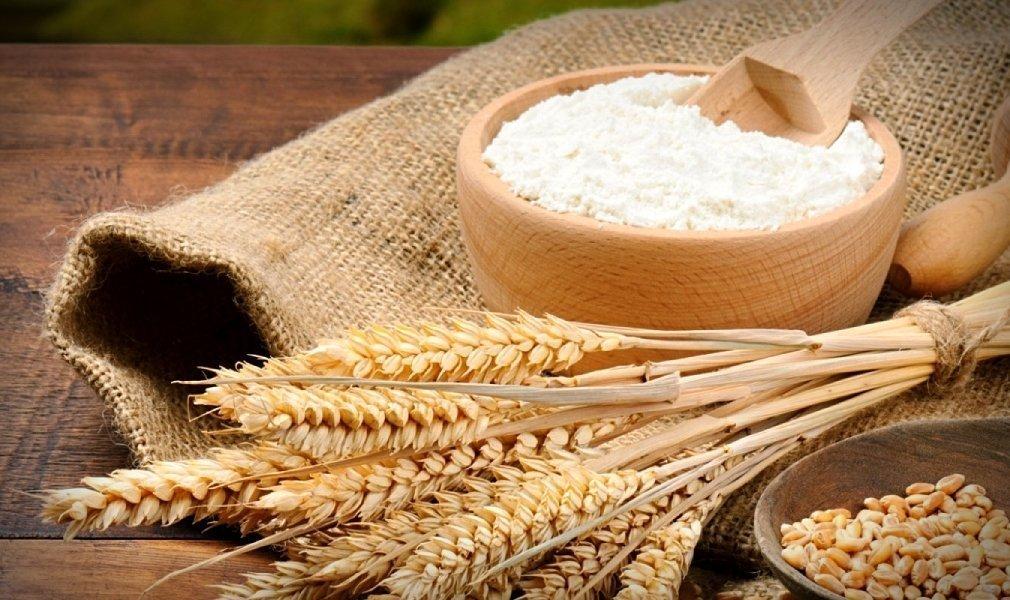 Farina biologica di grano antico