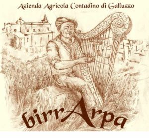 logo galluzzo
